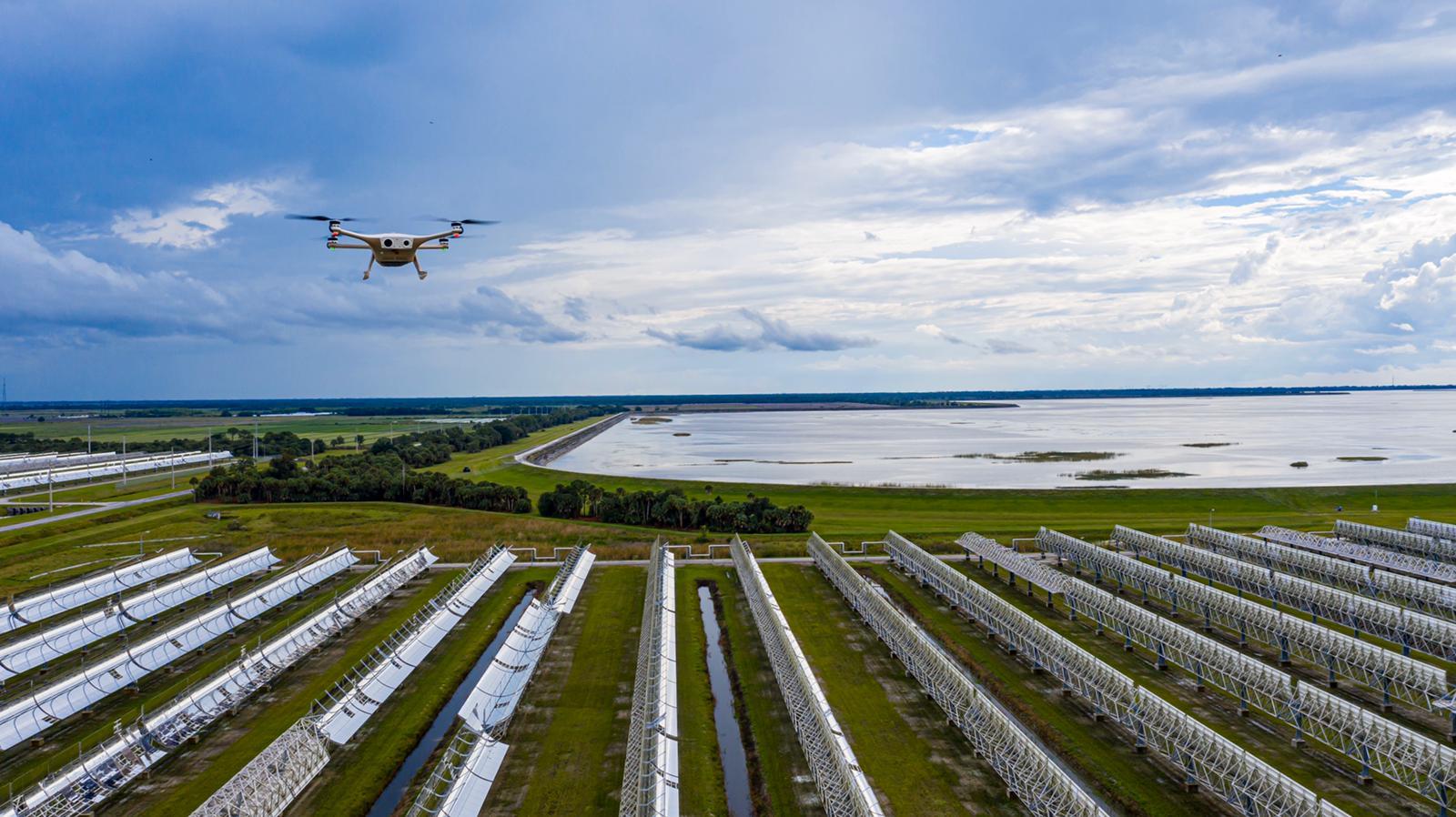 sparrow over solar site